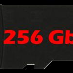 Micro sd da 256Gb